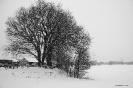 2013-01-16 Schneebild 3