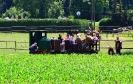 Probleme in Betriebsablauf werden bei Feldbahnern sofort behoben.