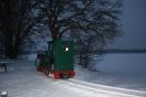 2013-01-16 Schneebild 4