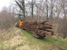 2005-01-05 Gleisabbau